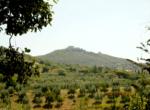 italie-montecchio-039