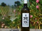 vino-bianco15