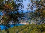 Biodola Hill_31